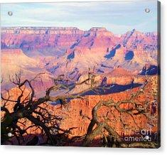 Canyon Shadows Acrylic Print by Janice Sakry