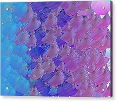 Capixart Abstract 10 Acrylic Print by Chris Axford