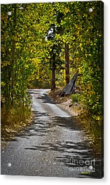 Carefree Highway Acrylic Print by Mitch Shindelbower
