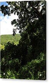 Caribbean Cruise - St Kitts - 1212225 Acrylic Print by DC Photographer