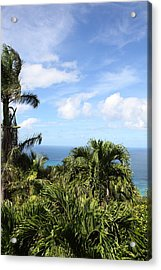 Caribbean Cruise - St Thomas - 1212212 Acrylic Print by DC Photographer