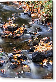 Cascading Autumn Leaves On The Miners River Acrylic Print by Optical Playground By MP Ray