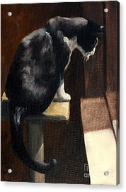 Cat At A Window With A View Acrylic Print by Lisa Phillips Owens