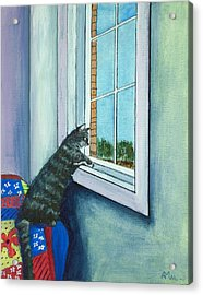 Cat By The Window Acrylic Print by Anastasiya Malakhova
