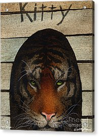 Cat House... Acrylic Print by Will Bullas