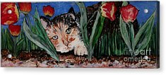 Cat In The Grass Acrylic Print by Cathy Weaver