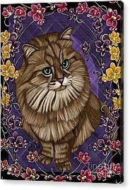 cat Acrylic Print by Karen Sheltrown