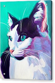 Cat - Kitty Acrylic Print by Alicia VanNoy Call