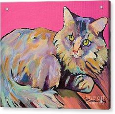 Catatonic Acrylic Print by Pat Saunders-White