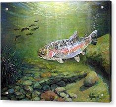 Catch It Acrylic Print by Donna Tucker