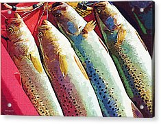 Catch Of The Day Acrylic Print by Margie Middleton