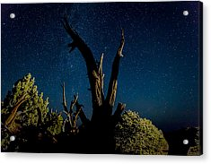 Cathedral Valley Night Sky Acrylic Print by Jennifer Grover