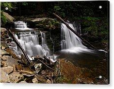Cayuga Waterfalls Acrylic Print by David Simons