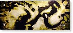 Ceilings Of Petra # 4 Acrylic Print by JOnezi