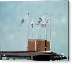 Center Field Flags Acrylic Print by Terry Weaver