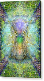 Chakra Tree Anatomy With Mercaba In Chalice Garden Acrylic Print by Christopher Pringer