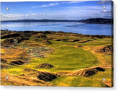 Chambers Bay Golf Course II Acrylic Print by David Patterson