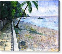 Champagne Snorkel Dominica Acrylic Print by John D Benson