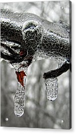 Change Of Seasons Acrylic Print by Lara Ellis