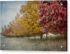 Changing Of The Seasons Acrylic Print by Jeff Swanson