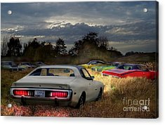 Charger Field Acrylic Print by Tom Straub
