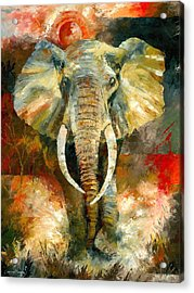 Charging African Elephant Acrylic Print by Christiaan Bekker