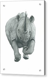 Charging Rhino Acrylic Print by Rich Colvin
