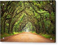 Charleston Sc Edisto Island - Botany Bay Road Acrylic Print by Dave Allen