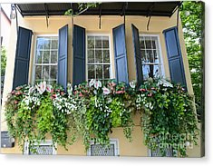 Charleston Window Box Flower Photography - Charleston Yellow Blue Green Floral Window Boxes Acrylic Print by Kathy Fornal