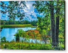 Cherokee Lake Tennessee  Acrylic Print by Bob and Nadine Johnston