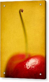 Cherry Bliss Acrylic Print by Amy Weiss