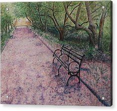 Cherry Blossom Pathway Acrylic Print by Patsy Sharpe