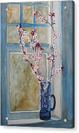 Cherry Blossoms In A Blue Pitcher Acrylic Print by Jenny Armitage