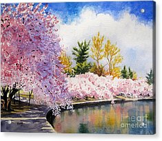 Cherry Blossoms Acrylic Print by Shirley Braithwaite Hunt