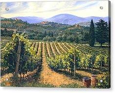 Chianti Vines Acrylic Print by Michael Swanson