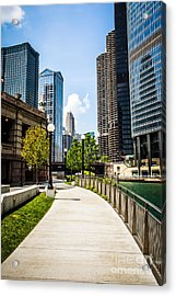 Chicago Riverwalk Picture Acrylic Print by Paul Velgos