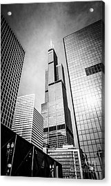 Chicago Willis-sears Tower In Black And White Acrylic Print by Paul Velgos