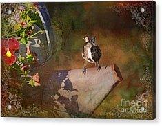 Chickadee Flower Pot Acrylic Print by Debbie Portwood