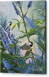 Chickadees And Lilac Acrylic Print by Michael Ashmen