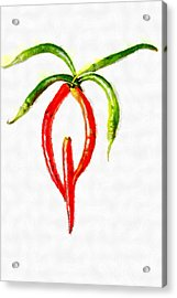 Chilli Palm Painting Acrylic Print by Magomed Magomedagaev