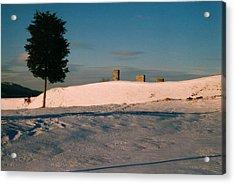 Chimneys And Tree Acrylic Print by David Fiske