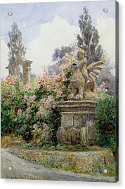 China Roses Villa Imperiali Genoa Acrylic Print by George Samuel Elgood