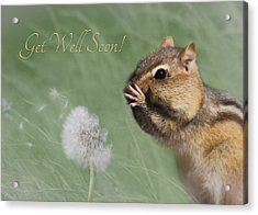 Chippy Get Well Soon Acrylic Print by Lori Deiter