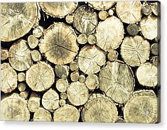 Chopped Wood Acrylic Print by Tom Gowanlock