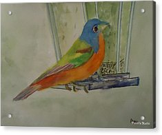 Chris' Birdfeeder Acrylic Print by Betty Pimm