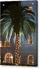 Christmas Palm Acrylic Print by Kenneth Albin