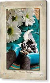 Chrysanthemum Cuttings Acrylic Print by John Edwards