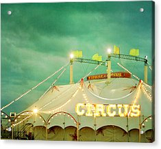 Circus II Acrylic Print by Violet Gray