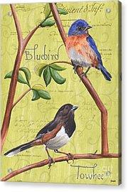 Citron Songbirds 1 Acrylic Print by Debbie DeWitt