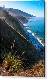 Cliff Grass At Big Sur Acrylic Print by Adam Pender